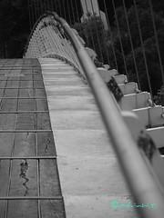 il ponte sospeso (Melvintay) Tags: silhouette polaroid shot fotografia autoscatto selfie lovebw igersbologna fotografandolacitta lovebiancoenero faiclick mettiafuocoescatta lovesbologna scattoinbiancoenero
