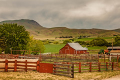 Butte Ranch (http://fineartamerica.com/profiles/robert-bales.ht) Tags: ranch trees red southwest beautiful beauty architecture barn wow spectacular landscape colorful unitedstates superb awesome scenic surreal peaceful places idaho pacificnorthwest sensational states projects inspirational spiritual sublime tranquil emmett magnificent rollinghills inspiring haybales oldbarn greetingcards cattleranch canonshooter treasurevalley forupload gemcounty farmlandscape squawbutte farmphotography idahophotography emmettvalley sceniclandscapephotography