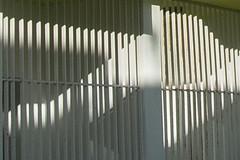locked out.  locked in - secure . . . (maulbeerbaum) Tags: light white lines vertical architecture grey shadows grau architektur tor schatten rhythm gitter streifen geometrie corralejo fuerte linien geometrisch lamellen stangen vertikal rhythmisch