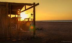 Relax (Ahmed Dardig) Tags: travel sea sun sunrise relax landscape photography dahab redsea egypt explore explored southsinai rasabugalum