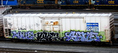 ague - niver - gane (timetomakethepasta) Tags: ague niver gane pepe stie fh wash freight train graffiti armn reefer union pacific chilled express