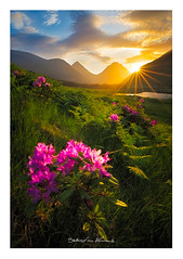 Glen Etive (Sebastian Kraus) Tags: trees light sunset red sun green water grass rain yellow clouds sunrise scotland highlands rocks edinburgh view sebastian stones visit workshop loch kraus lochan visitscotland takeaview sebastianito