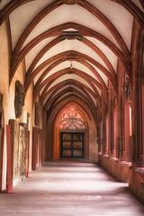 Flgel im  Kreuzgang 2 (uschmidt2283) Tags: a7r architektur blumen esb mainz natur spiegelungen stdte