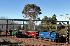 IMG_1998 (biqua) Tags: nsw burwood 4001 3642 transportheritageexpo2016
