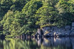 Loch Ard Reflections (dalejckelly) Tags: trees summer lake plant reflection tree rock reflections landscape scotland rocks outdoor loch trossachs ard