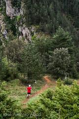 Mirador de Jnovas, Huesca (Jose Antonio Abad) Tags: ara aragn espaa huesca josantonioabad jnovas lanscape naturaleza paisaje pblica river ro roara sobrarbe spain agua nature ribera water fiscal