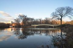 Central Park-Bow Bridge, 01.03.16 (gigi_nyc) Tags: centralpark winter nyc newyorkcity thelake reflections bowbridge