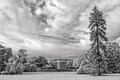 White House - South Lawn - Infrared (Michael Pancier Photography) Tags: blackwhite districtofcolumbia editorialphotography michaelapancier michaelpancierphotography washingtondc commercialphotography fineart fineartphotographer infrared landscapephotographer landscapephotography naturephotographer naturephotography travelphotography wwwmichaelpancierphotographycom washington unitedstates us whitehouse thewhitehouse theexecutivemansion southlawn