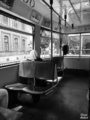tram (Gina's Atelier) Tags: tram strasenbahn austria sterreich vienna wien bw blackandwhite schwarzweis sbahn
