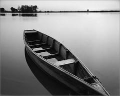 (Yuriy Sanin) Tags: kievrus ukraine yuriy sanin blackandwhite boat river  horizon trees bushes 4x5 nagaoka