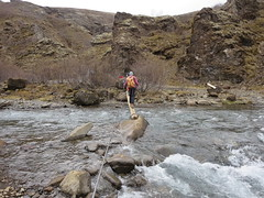 Log crossing River at the base of Glymer, Iceland's highest waterfall (Travel writer at KristineKStevens.com) Tags: iceland glymer river rivercrossing