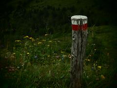 Paletto CAI (sandra_simonetti88) Tags: cai clubalpinoitaliano paletto montagna mountains nature natura intothewild escursioni italy italia lombardia vallecamonica