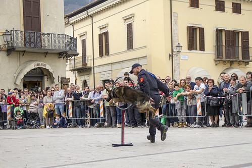 cinofili_a_norcia_in_piazza-005_da_raw