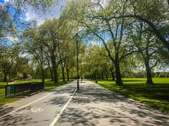 Walking Alone (Mohmed Althani) Tags: travel england color green london love photo exposure unitedkingdom gb doha qatar frined greatshots topshots flowerwatcher iphone6