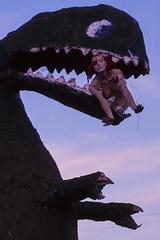Stewart's Petrified Wood (Colton Davie) Tags: sunset arizona film mannequin 35mm folkart dinosaur january slide roadtrip painteddesert magichour 2012 reversal nikon105mmf25 stewartspetrifiedwood canoneoselan7