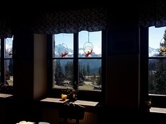inside or outside? (WojtekBear) Tags: winter mountain mountains window zima tatry tatras tatra okno glodowka