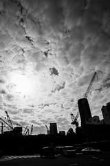 Mers et mares (Dan Bouteiller) Tags: street city sky urban cloud streets cars japan clouds contrast canon eos japanese tokyo 14 shibuya streetlife streetscene ciel 5d canon5d crossroad crosswalk nuage nuages japon ville japonais streetshot nuageux 14mm samyang 5d2 5dmk2 samyang14mm