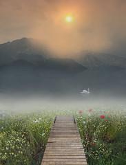 (John ) Tags: morning mountain landscape canon1022 canon60d