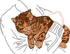 Besoin de clins (Isaszas) Tags: cat katze skizze sketch drawing esquisse chat dessin tablettegraphique wacom image clipart