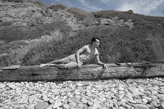Sacred Cove (#1) (dksmediasolutions) Tags: ocean ca wild portrait usa beach nature photography shore echopark dreamscape artisticportrait rachopalosverdes abalonecoveshorelinepark davidksmith shawndean