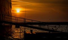 Morning Boarding (fehlfarben_bine) Tags: sunrise harbor boat ship entrance vessel lakemichigan walkway chicagoillinois goldenlight chicagoyachtclub mvabegweit nikondf nikon2401200mm