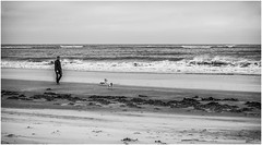 Alnmouth . (wayman2011) Tags: uk people beach dogs mono coast seaside seascapes northumberland alnmouth canon5d lightroom bwlandscapes wayman2011