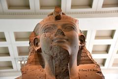 Bust of king Amenhotep III (Sumer and Akkad!) Tags: ramesses amenhotep abydos karnak thebes egypt statue pharaoh cobra vulture osiris isis sphinx ram falsedoor stele cat britishmuseum british museum bloomsbury london hathor luxor philae ptolemaicperiod middlekingdom newkingdom lateperiod ahmose thutmose giza saqqara memphis