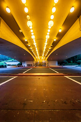 So Long Frank Lloyd Wright (Thomas Hawk) Tags: california franklloydwright marin marinciviccenter marincounty northbay sanrafael usa unitedstates unitedstatesofamerica architecture fav10