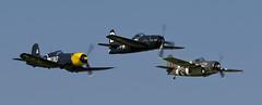 TFC Fighters - 7 (NickJ 1972) Tags: shuttleworth collection oldwarden fly navy airshow 2016 aviation grumman f8f bearcat grumm 121714 b201 chance vought f4u fg1 corsair gfgid kd345 a130 f4f generalmotors fm2 wildcat martlet grumw jv579 f thatoldthing