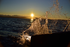 A splash of sun (RichSeattle) Tags: richseattle nikon d750 seattle washington ocean sun splash water alkaipoint alkaibeach beach pugetsound sunset