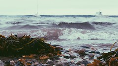 Portland beach (Alyssa Drabik) Tags: canont5i follow like critique travel explore discover portland portlandmaine alyssadrabik