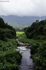 Pristine Nature (Deepu Cyriac) Tags: landscape wildlife westernghats nature palakkad mannarkkad travel siruvanidam siruvani dam siruvanireserveforest