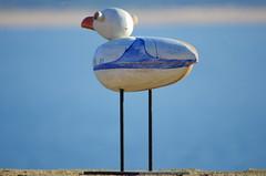 213 - Farolim da Nazar (paspog) Tags: nazar portugal mouette mouettes seagull seagulls