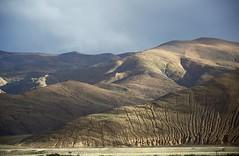Landscape on the move, Tibet 2015 (reurinkjan) Tags: tibetབོད བོད་ལྗོངས། 2015 ༢༠༡༥་ ©janreurink tibetanplateauབོད་མཐོ་སྒང་bötogang tibetautonomousregion tar ütsang dingriདིང་རི།county himalayamountainsགངས་རི་དབང༌ himalayaཧི་མ་ལ་ཡ་ རི་himalayamtrangeརྒྱུད་ཧི་མ་ལ་ཡrigyühimalaya himalayasརི་གངས་ཅནrigangchen tibetanlandscapepicture landscapeཡུལ་ལྗོངས།yulljongsyünjong landscapesceneryརི་ཆུ་ཡུལ་ལྗོངསrichuyulljongsrichuyünjong landscapepictureཡུལ་ལྗོངས་རི་མོyulljongsrimoyünjongrimo natureརང་བྱུང་ཁམས་rangbyungrangjung natureofphenomenaཆོས་ཀྱི་དབྱིངས་choskyidbyings earthandwaternaturalenvironmentས་ཆུ་sachu erosion