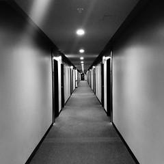 t h e  l o n g  w a l k  [or, the hallway to the nearest elevator!] (wrapped in dreams) Tags: hallway hotel moxie tempe az