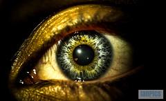Polareyes (ian.pics90) Tags: iris light macro eye face look dark mirror eyes colours shine watch human polar augen eis feuer auge blick farben saarland mensch augenblick