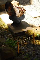 d200_dsc_2315_20150530 (mick ronno) Tags: nikon shrine af d200 kawagoe nikkor 2870mmf3545d jinja 川越 hikawa koedo 小江戸 川越氷川神社