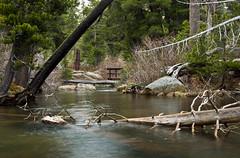 Woods Lake (trifeman) Tags: california rain canon carson spring may sierra sierranevada t3i 2015 hwy88 carsonpass eldoradonationalforest enf tamron18270mm