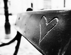 Love Bench (bencreasey1) Tags: park white black love nature monochrome bench poland krakow