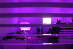 May 6th 2016 (lucyphotography) Tags: school art college tom computer purple blind room blinds uni peeping