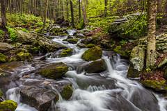 Stream (Bob Kirschke) Tags: us woods unitedstates pennsylvania waterfalls bushkill