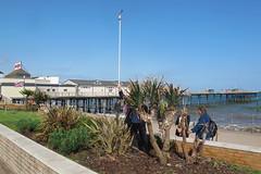 IMG_1956Site4 (janohighway) Tags: summer sculpture art design seaside community selection environment choice recycling collective debate teignmouth outdoorart ecoart sculpturetrail devonuk womenartists trail2016