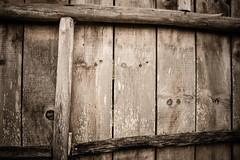 #236 of 365 days - Wooden wall (Ruadh Sionnach) Tags: ranch wood naturaleza house texture textura nature wall casa wooden ancient pattern natural folk farm natureza folklore medieval age celtic druid viking celt paganism mystic rancho pagan fazenda celta druidism druida mstico druidismo