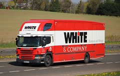 SCANIA P250 - WHITE & Company Removals Forres (scotrailm 63A) Tags: trucks removals lorries