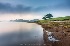 THRIVING TOGETHER (Andre Luu) Tags: trees light sky cloud mountain lake mountains tree nature water clouds landscape stream natural sony vietnam dalat waterreflection cloudpatterns cloudpattern a7r sonya7r andreluucom