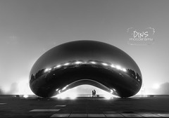 19-52/2016 ~ The Bean (DinsPhoto) Tags: blackandwhite chicago fog michiganave millenniumpark cloudgate thebean 52weeksthe2016edition week192016 weekstartingfridaymay62016