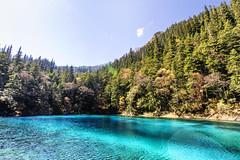 Five Colours Pool (fanjw) Tags: china trees nature vibrant rich sichuan jiuzhaigou waterscape lakescape jiuzhaivalley wucaichi fivecolourslake jiuzhaigouwucaichi
