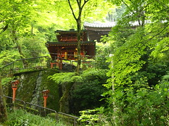 A temple in the mountain (brisa estelar) Tags: travel trees red mountain green nature japan landscape temple kyoto traditional buddhism lantern  unseenasia