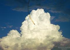 Going for the Clouds (Antônio A. Huergo de Carvalho) Tags: sky cloud airplane aircraft aviation smoke céu cumulus vans cb rv avião tcu nuvem aviação aerobatic fumaça aerobatics cumulunimbus rv7a acrobático acrobaciaaérea vansrv towercumulus aviaçãoexperimental ptzum