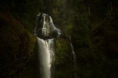 Falls Creek Falls (dwolters2) Tags: waterfalls washington columbia gorge sony samyang 14mm f28 nix low key explore